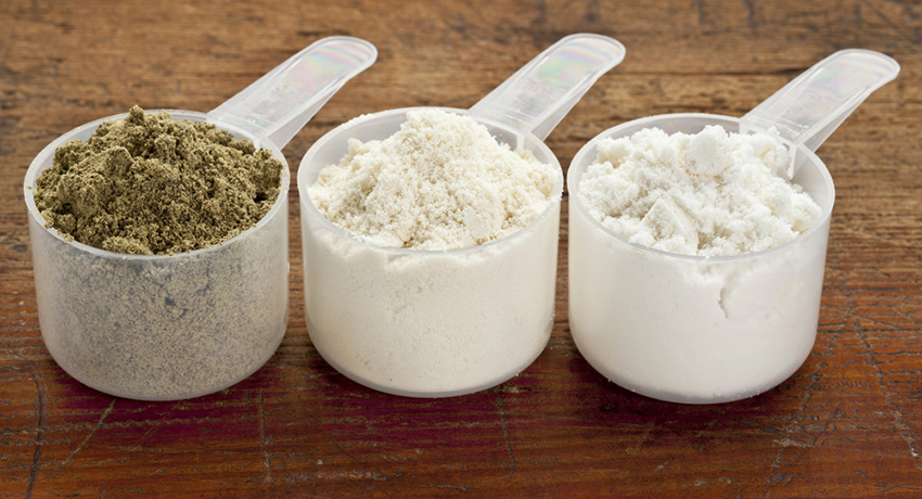 Whey concentrate, isolate and hydrolysate